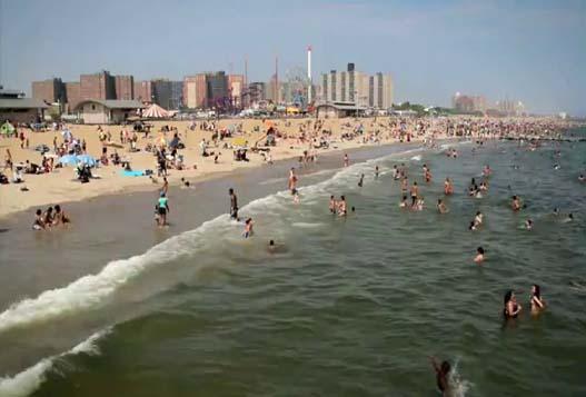 Лето В Бруклине